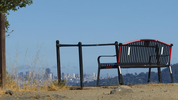 82fa4 bench%2Bfor%2Broz%2B11 The Story Behind The Bench With One Of The Best Views In The Bay Area