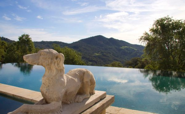 b05d5 infinitypool 600x369 4 Bay Area Celebrities And Their Real Estate Deals in 2016